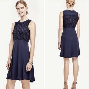 Ann Taylor Lace Fit and Flare Navy Blue Dress